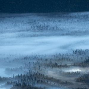 Quiet pond Description: Litlle pond in the misty forest in the Sarek National Park Place: Sweden Make: NIKON CORPORATION Model: NIKON D4 ExposureTime: 1/125 Date: 07-09-2014 ApertureFN: f/11.0 ISOSpeed: 500 FocalLength: 4000/10