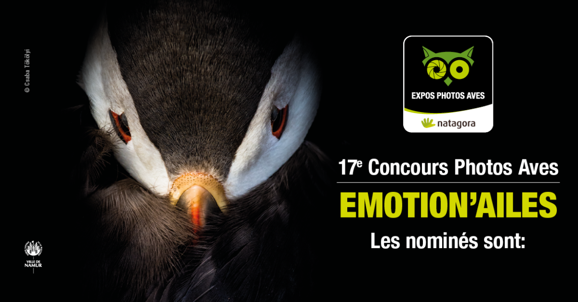 Nominated Emotion'ailes 2019